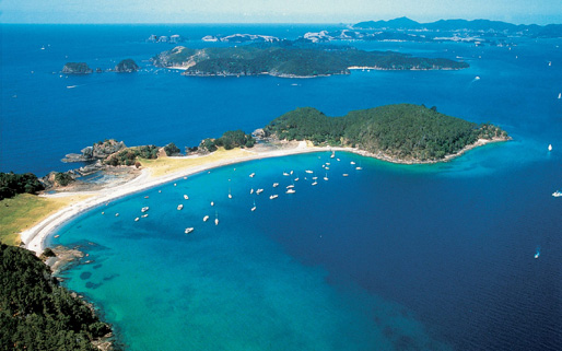 Bay of Islands with Hole-in-the-Rock Cruise and Waitangi with Lunch