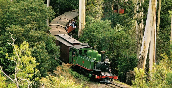 PUFFING BILLY TOUR -HALF-